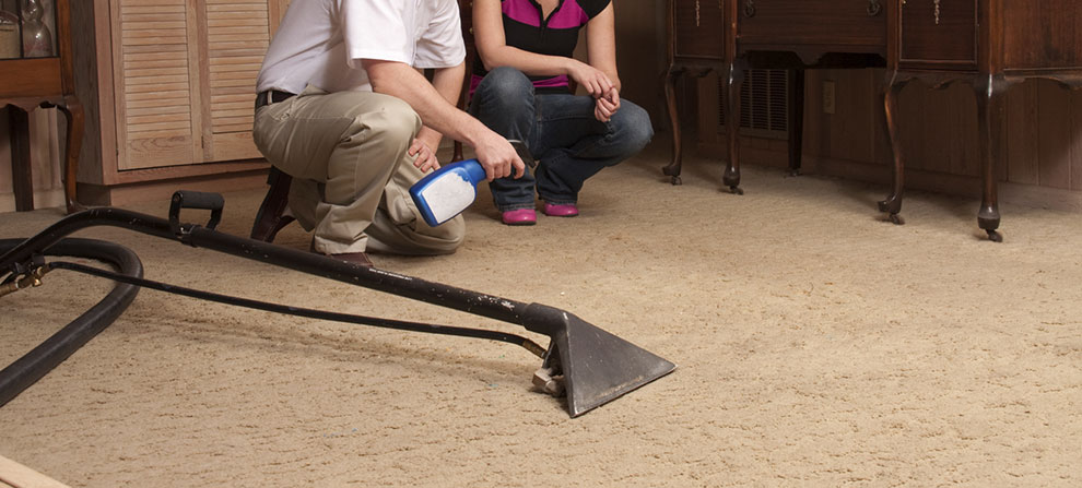 East Grand Rapids Carpet Cleaning Upholstery Cleaning And Tile
